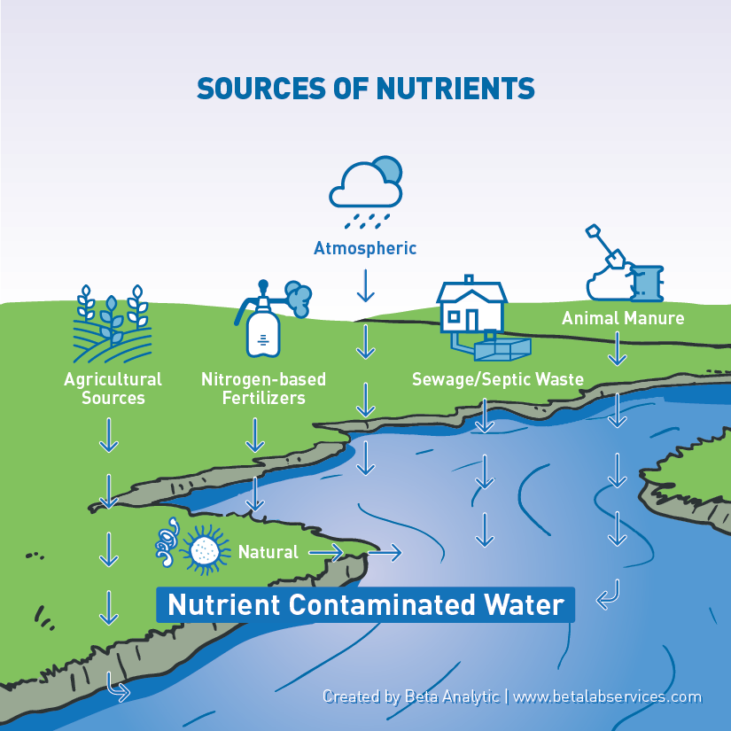 Nitrate pollution in water, high nitrate levels
